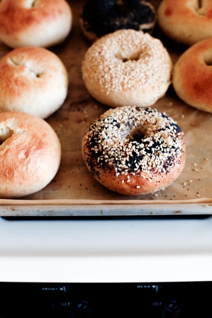 New York-Style Bagels Recipe - bagels on parchment from sophisticatedgourmet.com
